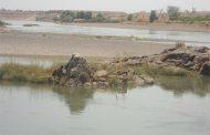 السودان يوكد علي  المواصفات والمقايس لتطوير قطاع الاسماك