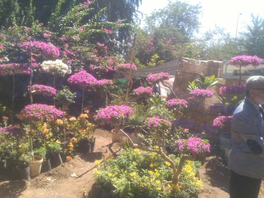 معرض الزهور السنوي. موسم العبير والابداع