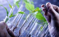 مستقبل التقانة الحيوية في السودان