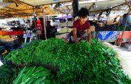 منتجات العراق الزراعية تتلمس طريقها خارج الحدود