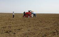 السودان يدشن برنامج أكثار تقاوي الأرز الهوائي بمنطقة الرهد