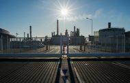 للمرة الأولى منذ عقدين الطلب على الوقود الحيوي يتراجع بسبب الوباء