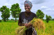 القضاء على الفقر والجوع في صدارة جدول الأعمال العالمي حيث تتعهد البلدان بتقديم أموال للصندوق